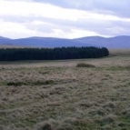 View over Epynt Range