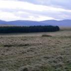 View over Epynt Range